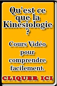 apprendre-la-kinesiologie.usefedora.com
